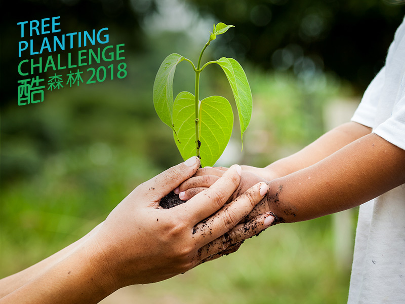 《酷森林2018》植樹遠足挑戰賽